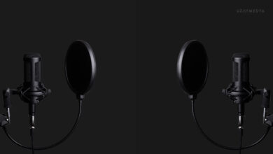 Görselde 2 adet siyah stüdyo mikrofonu yer alıyor