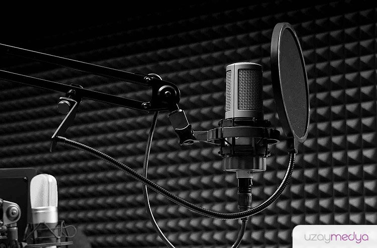Seslendirme stüdyosu